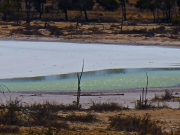 lac salé sur la route