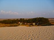 Mesa Camp, les 15 emplacements de camping aux pieds des dunes