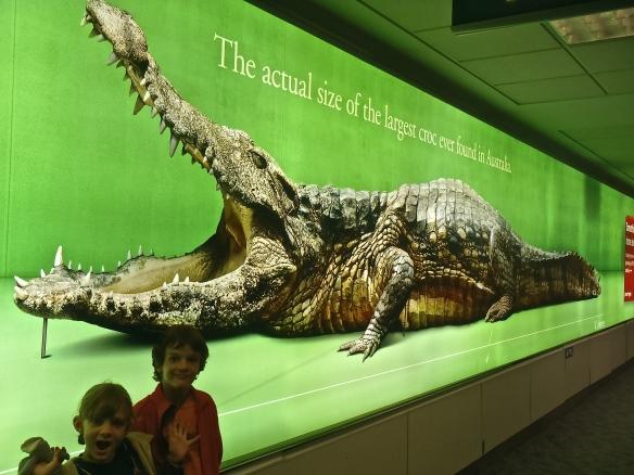 Le plus grand crocodile jamais trouvé en Australie, 8m10!