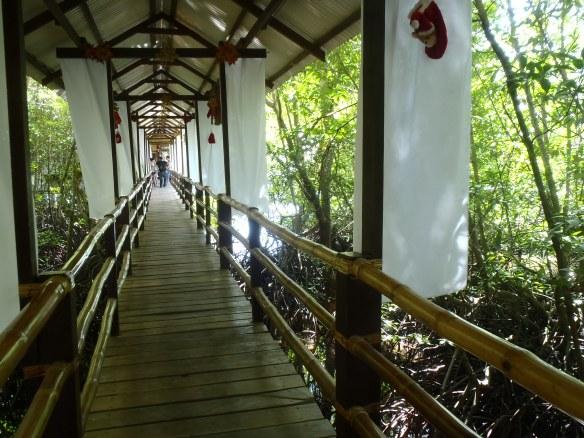 Restau sur la mangrove