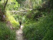 Route des waterfalls