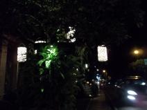 Ubud by night