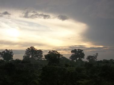 Parc d'Uda Walawe au petit matin