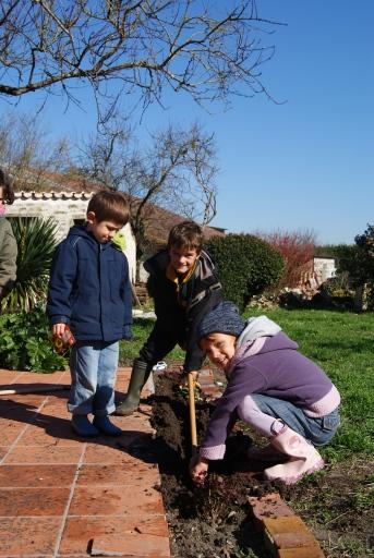 Jardinage à Sainte Gemme