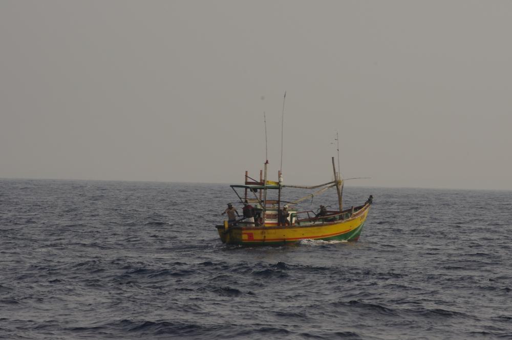 L'observation de LA baleine bleue (ou comment souffrir pendant 5 heures pour ELLE !) (4/6)