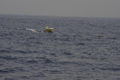 Bateau de pêcheur et dauphins